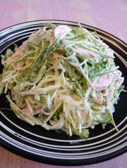 大人気✿水菜と春雨のマヨネーズサラダの写真