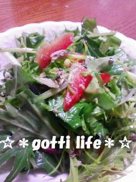 お気に入りサラダ