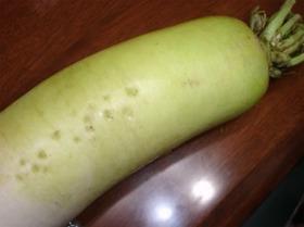 【冷凍保存】大根&山芋の保存方法