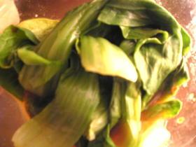簡単:レンジ1分:青梗菜の味噌酒生姜和え