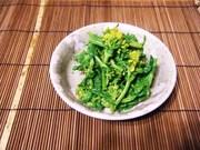 菜の花のまったりマヨからし醤油和えの写真