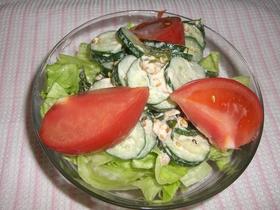 さっぱりおいし♪ゴママヨネー酢サラダ