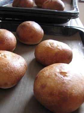 生種5週目!これぞホシノ酵母パン