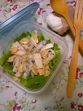 *蓮根と長芋の食感を楽しむサラダ*