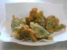 ベジフルーツオイルでふきのとうの天ぷら
