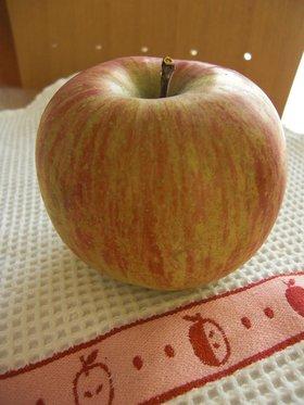 りんごの保存法