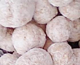 真っ白けカリカリクッキー