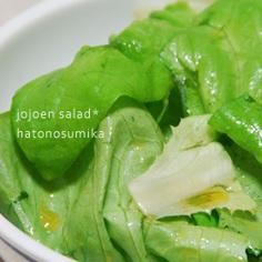 叙々苑風☆野菜サラダ