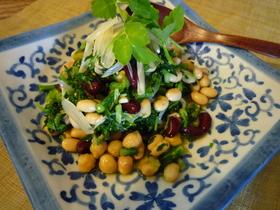 お豆と香味野菜の春色和風さらだ