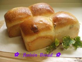 ✿ミニ食パン レーズン✿