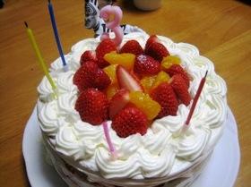 2009年バースデーケーキ