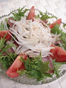わさび菜と新玉ねぎのお刺身サラダ