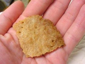 アレルギーっ子おやつ~味噌かわらクッキー