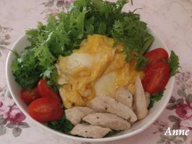 ☆ササミ&わさび菜のレモン風味サラダ☆