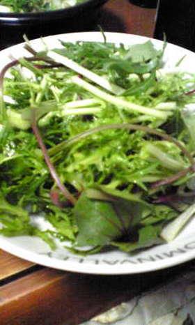 バルサミコとオリーブ油のシンプルサラダ