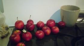 姫りんごで 簡単 りんご飴☆