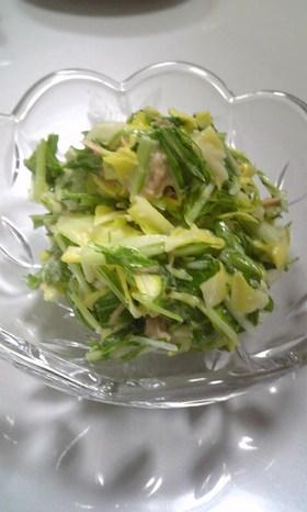 春キャベツと✿水菜の✿みそ✿マヨ✿サラダ