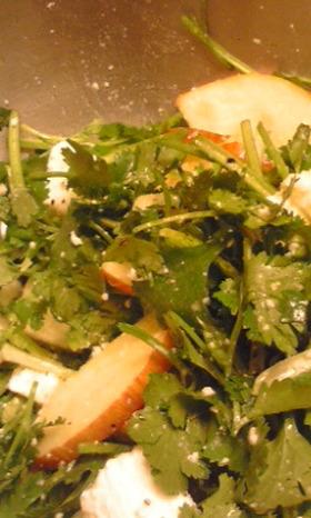 リンゴパニールパクチの蜂蜜サラダ
