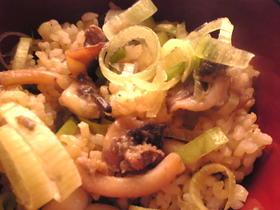 イカと葱の混ぜご飯
