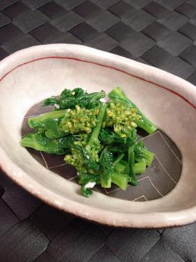 塩麹さんで♡菜の花のナムル風