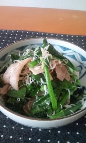 簡単炒め★旬の油菜と豚肉としらすで!