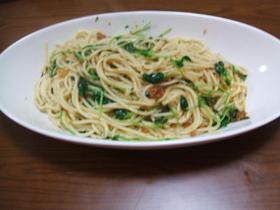 からすみと豆苗のペペロンチーノ