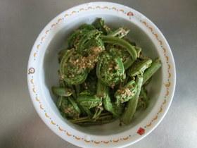 山菜の季節ですね、こごみの胡麻和え
