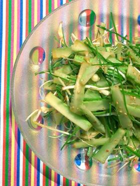 きゅうりと野蒜で作る♪オイタルレセンチェ