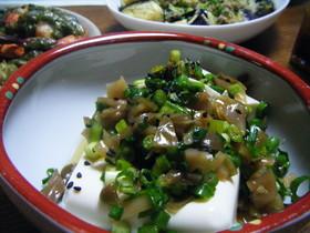 搾菜(ざあさい)豆腐