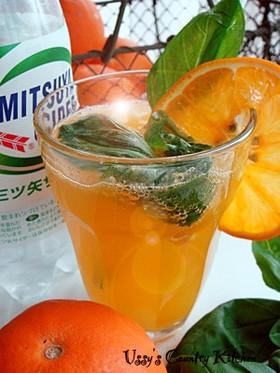 三ツ矢サイダー☆バジル&オレンジ味!