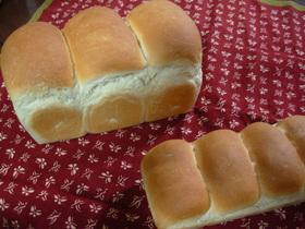 生イーストで。。。食パン