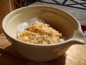離乳食「おじやの素」:鮭とお野菜