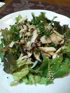 きのこのペペロンチーノ風サラダ