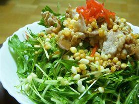 水菜の韓国風冷しゃぶサラダ