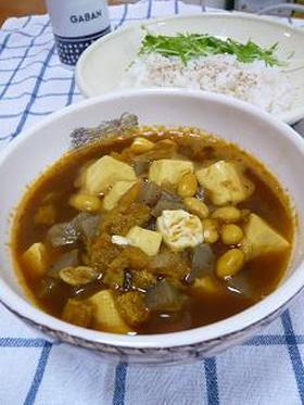 豆腐と大豆のスープカレー