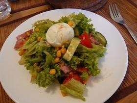 簡単サラダ~好きな野菜を切り混ぜるだけ~