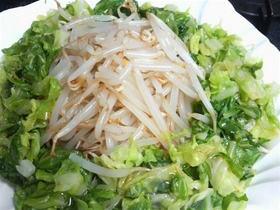 キャベツともやしのサラダ