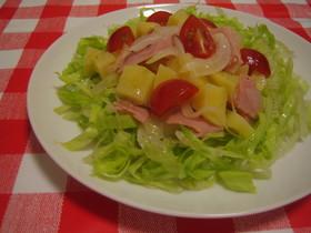 イタリアンホットポテトサラダ