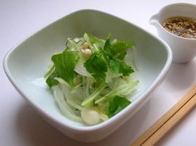レンジdeサラダ〜搾菜ドレッシング〜