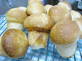 きのこパン
