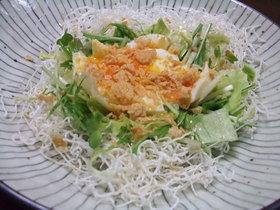 三種の緑黄野菜と半熟卵の巣ごもりサラダ