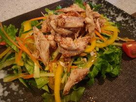 蒸し鶏の梅ごま風味サラダ