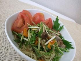 野菜マリネの冷やし中華
