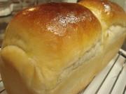 【パン】菓子パン生地~はちみつイーストの写真