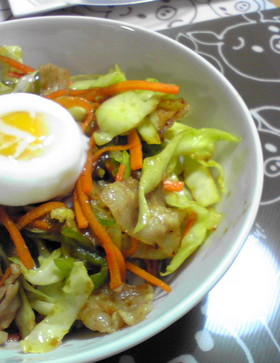 冷蔵庫の残り物で超簡単肉野菜丼だド~ン☆