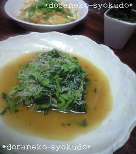 小松菜とシラスの煮浸し~ニンニク風味~