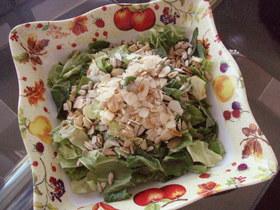 春キャベツの簡単サラダ