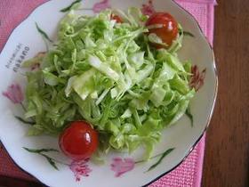 作り置き コールスローサラダ