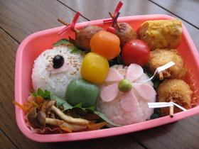 小学生のお弁当(遠足予備日編) 2009