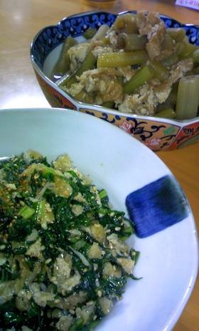 蕗を使いきり*煮物・簡単炒り煮